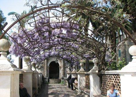 flowers in Villa D'Este